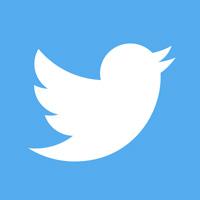 icone Tweeter